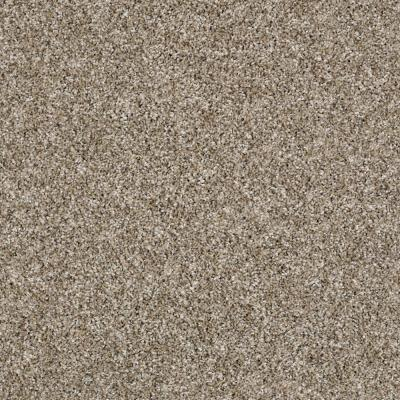 Tradeshow II - Color Sands of Time Texture 12 ft. Carpet
