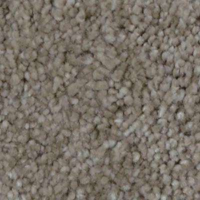 Carpet Sample - Harvest III - Color Topsey Texture 8 in. x 8 in.