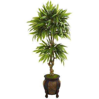 5.5 ft. High Indoor Mango Artificial Tree in Decorative Planter