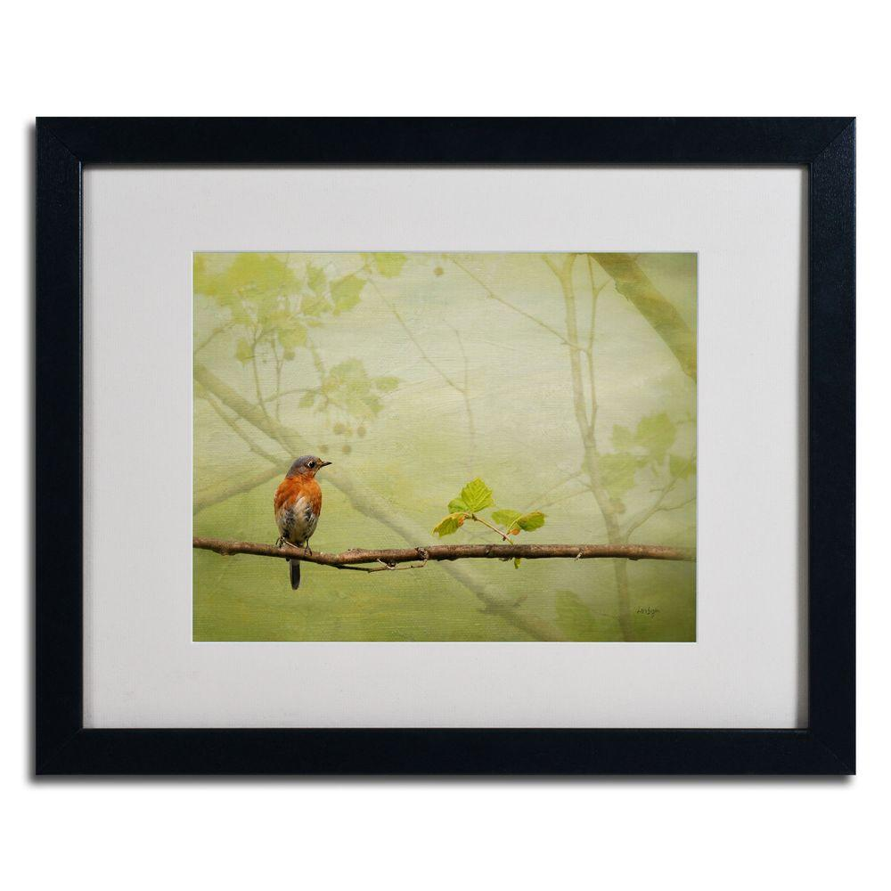 16 in. x 20 in. Bluebird in Spring Black Framed Matted