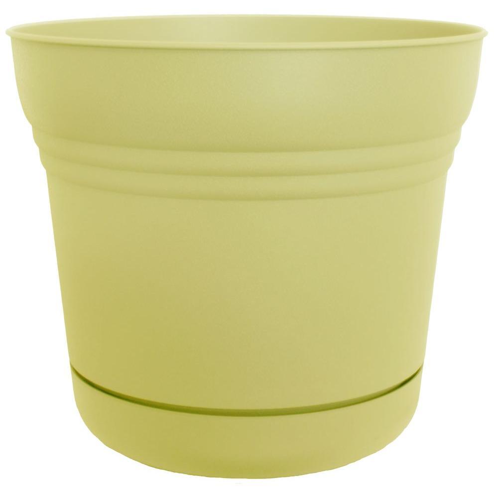 Bloem 5 in. Plastic Wax Bean Saturn Planter (12-Pack)