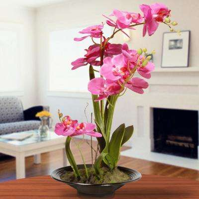 17 in. Pink Orchid Flowers