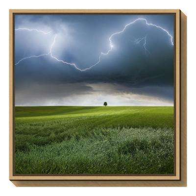 """Someplace in Summer"" by Franz Schumacher Framed Canvas Wall Art"