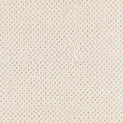 Swan Song - Carpet Samples - Carpet - The Home Depot
