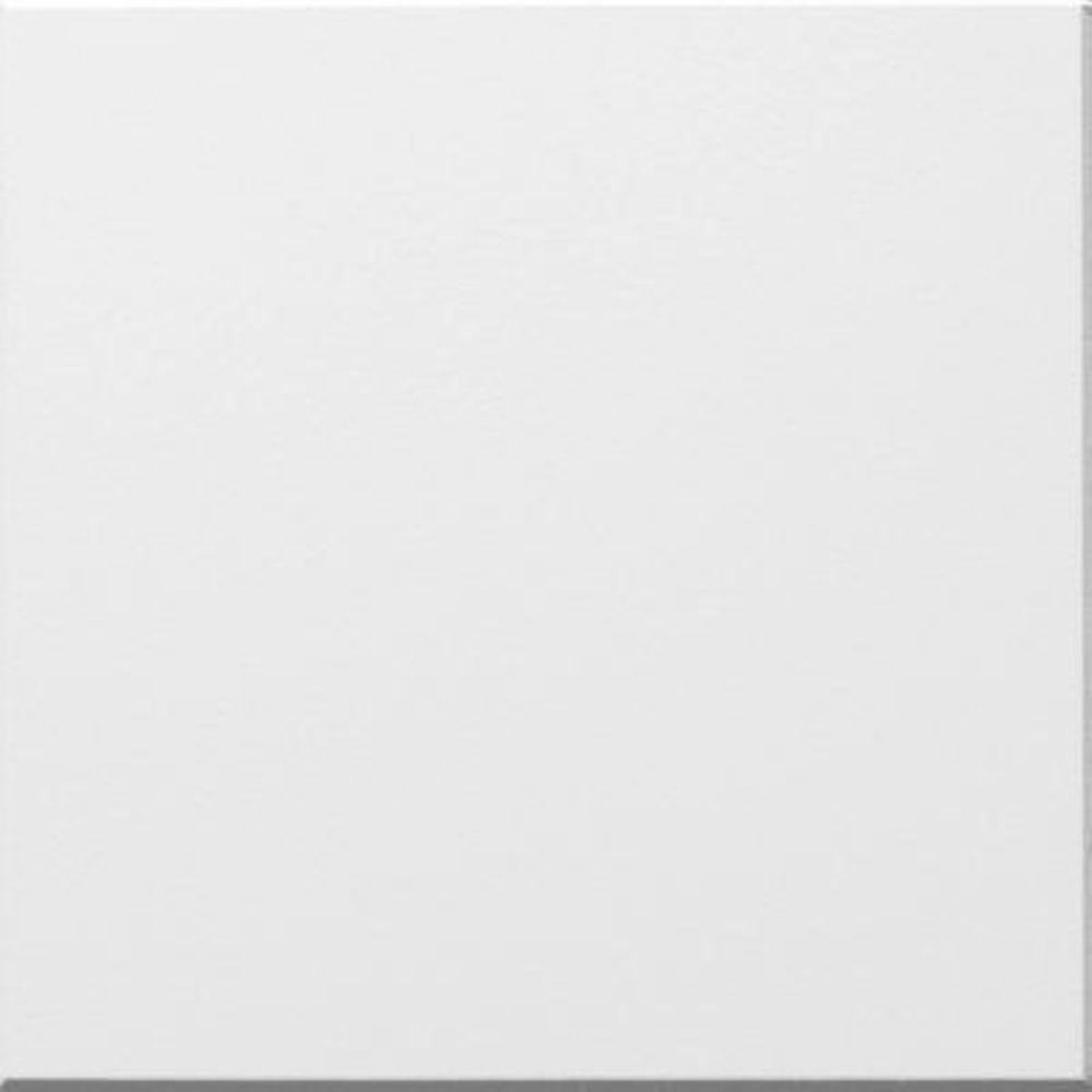 Armstrong 1 ft x 1 ft beveled tongue and groove ceiling tile in beveled tongue and groove ceiling tile in washable dailygadgetfo Image collections