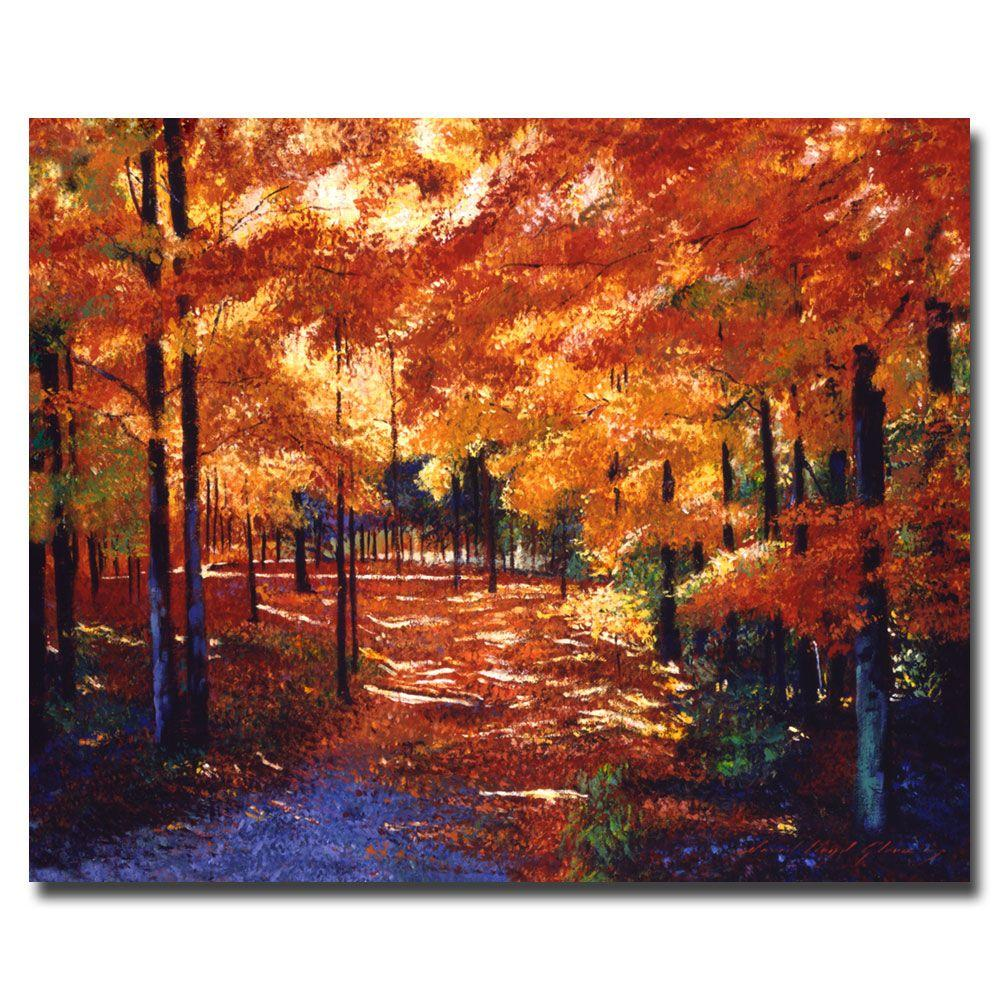 Trademark Fine Art 26 in. x 32 in. Magical Forest Canvas Art
