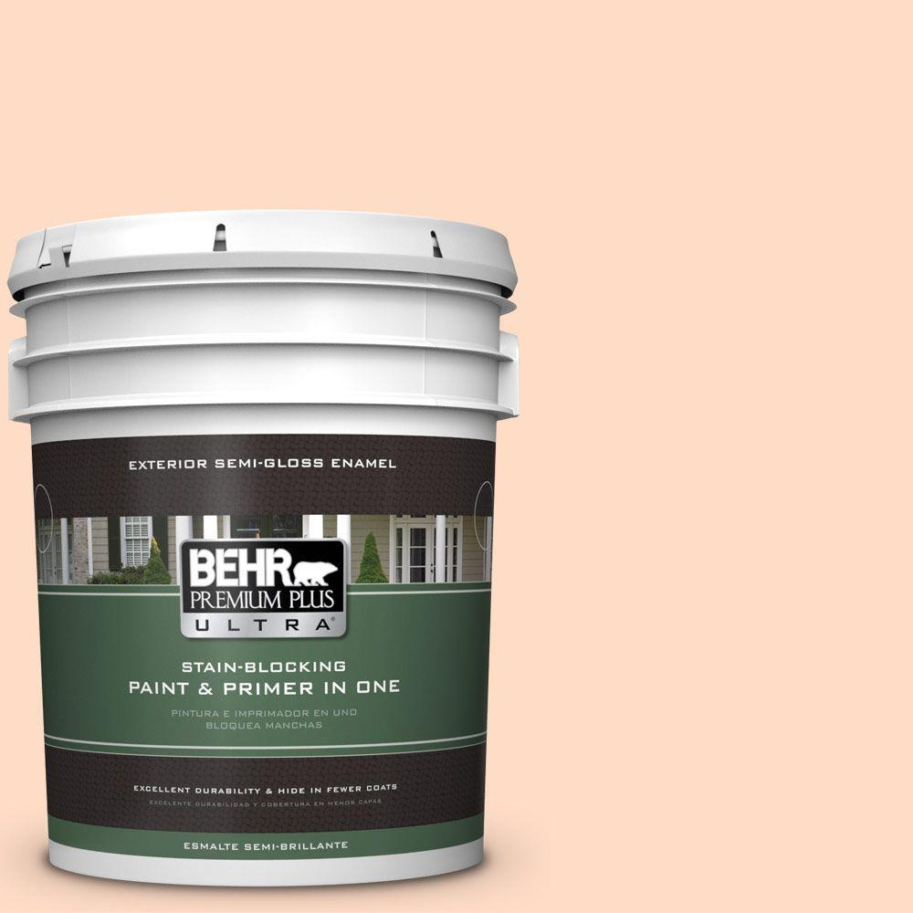 BEHR Premium Plus Ultra 5-gal. #260C-2 Salmon Creek Semi-Gloss Enamel Exterior Paint