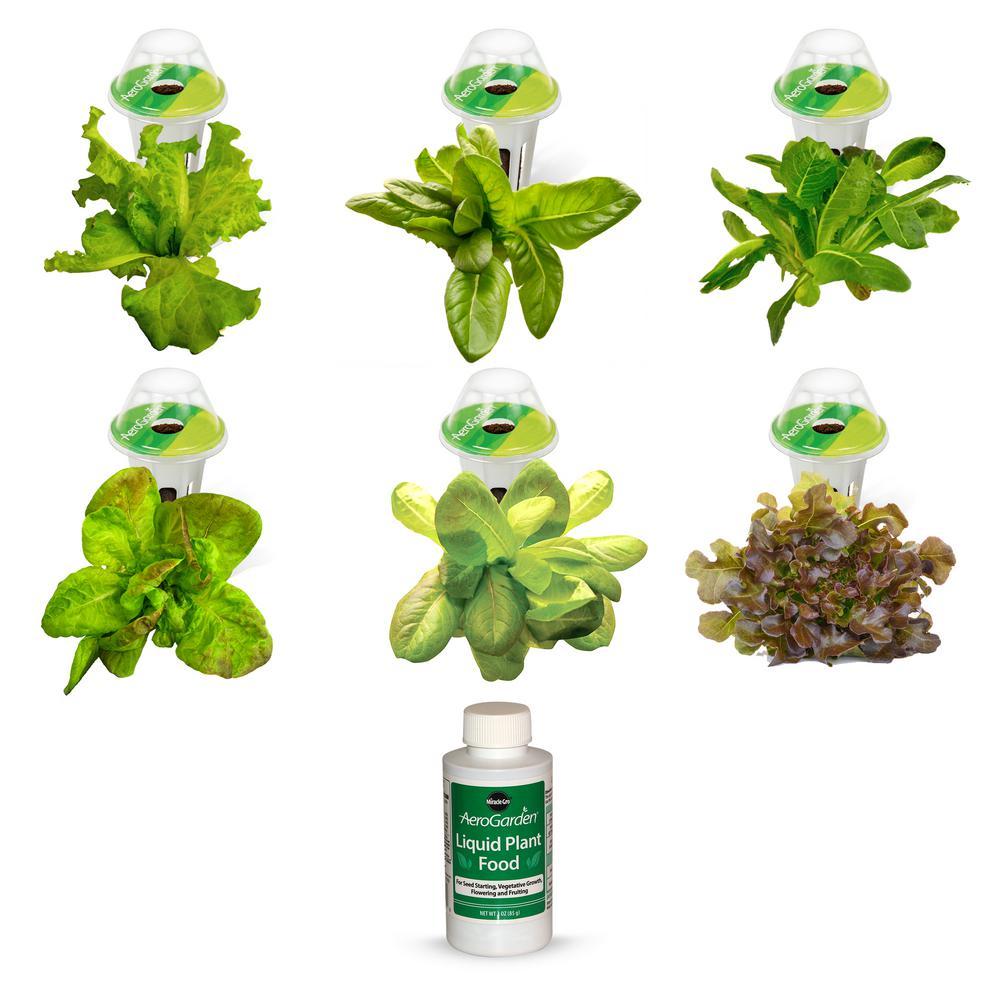 Heirloom Salad Greens Seed Pod Kit (6-Pod)