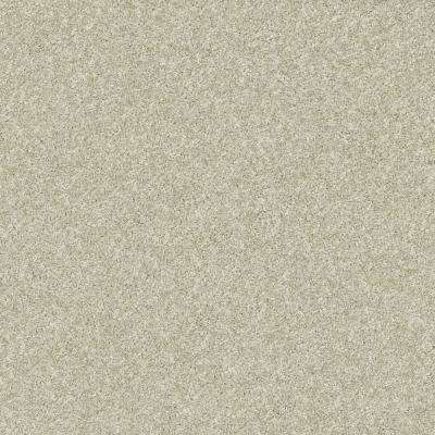 Stay Toned Toasted Marshmallow Texture 24 in. x 24 in. Carpet Tile (8 Tiles/Case)