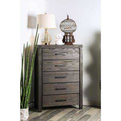 Rexburg Dark Gray Wire-Brushed Transitional Style Chest