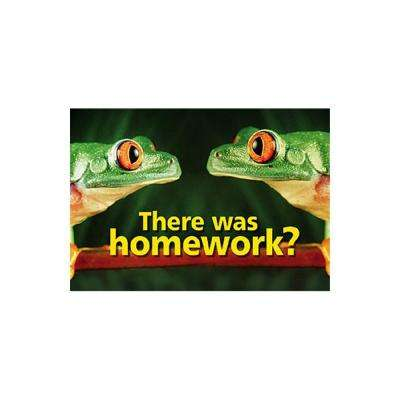 13 in. x 19 in. There was Homework Poster