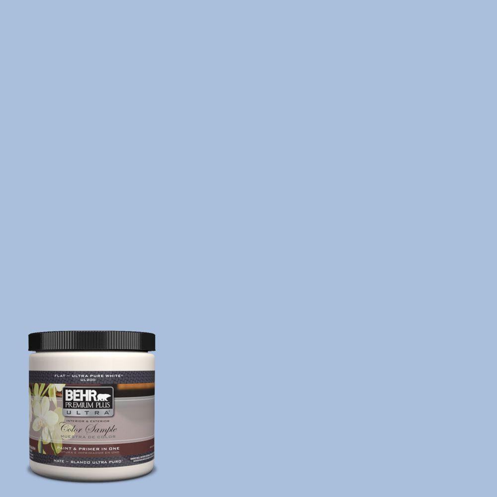 8 oz. #580D-4 Skysail Blue Interior/Exterior Paint Sample