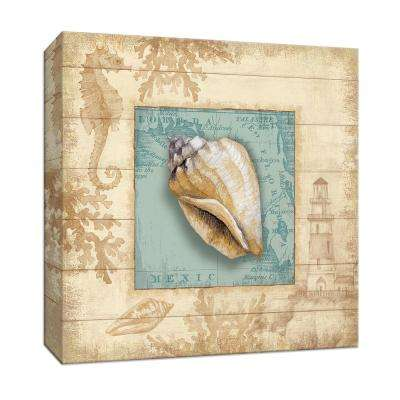 15 in. x 15 in. ''Beach Comber I'' Canvas Wall Art