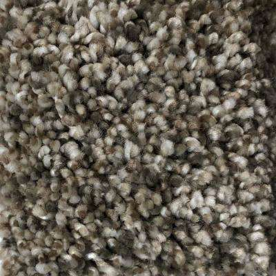Trendy Threads I - Color Hip Texture 12 ft. Carpet