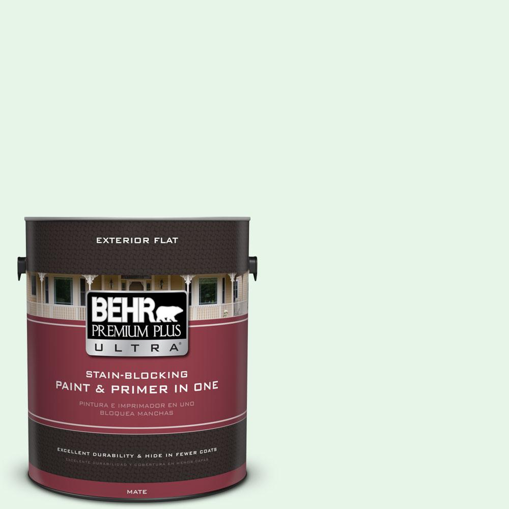 1-gal. #450C-1 Dinner Mint Flat Exterior Paint