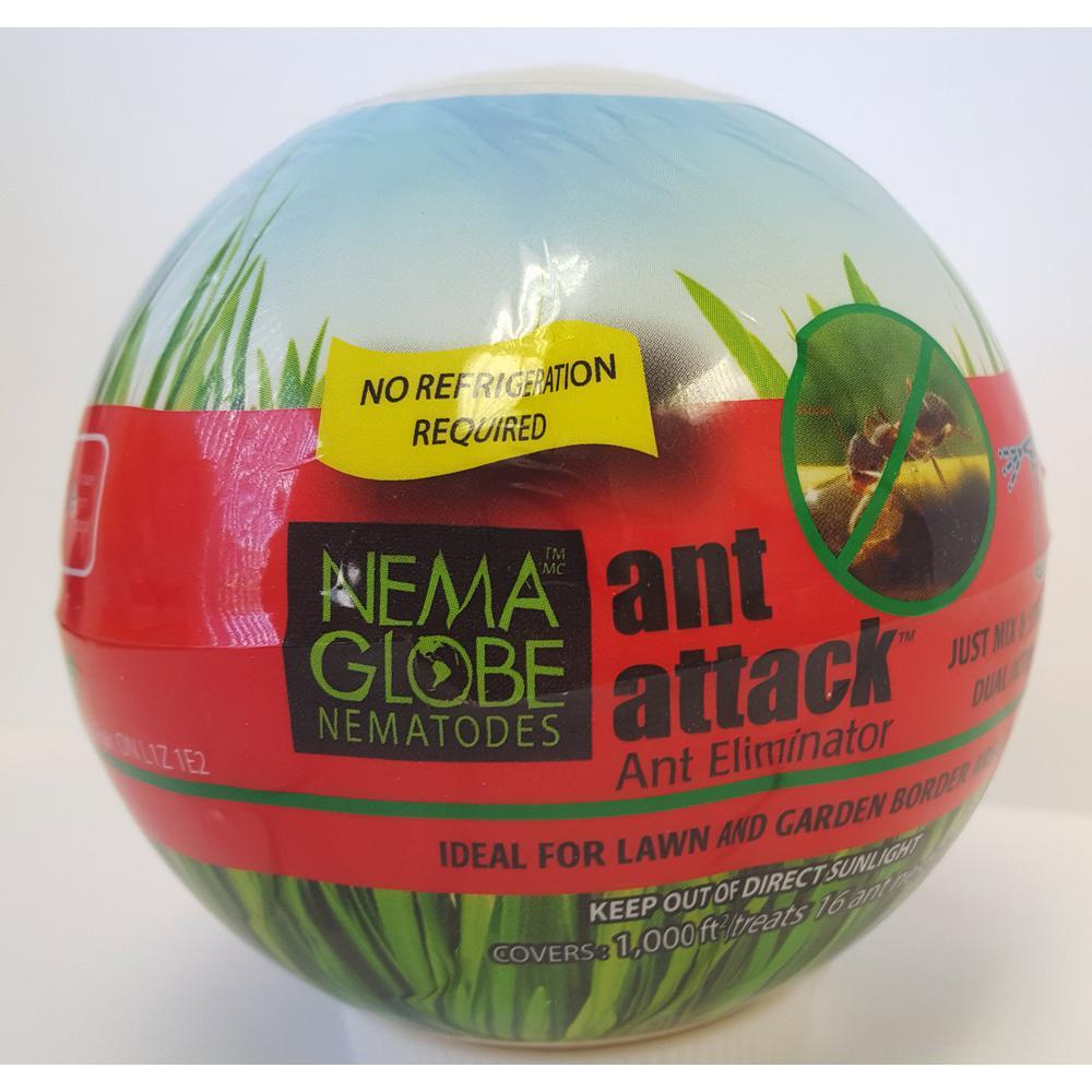 Ant Attack Ant Eliminator