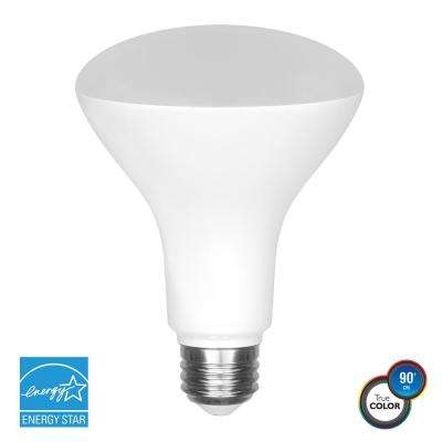 65-Watt Equivalent BR30 Dimmable LED Light Bulb
