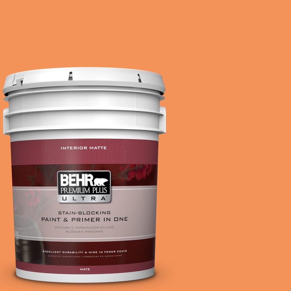 5 gal. #240B-5 Candied Yam Matte Interior Paint and Primer in