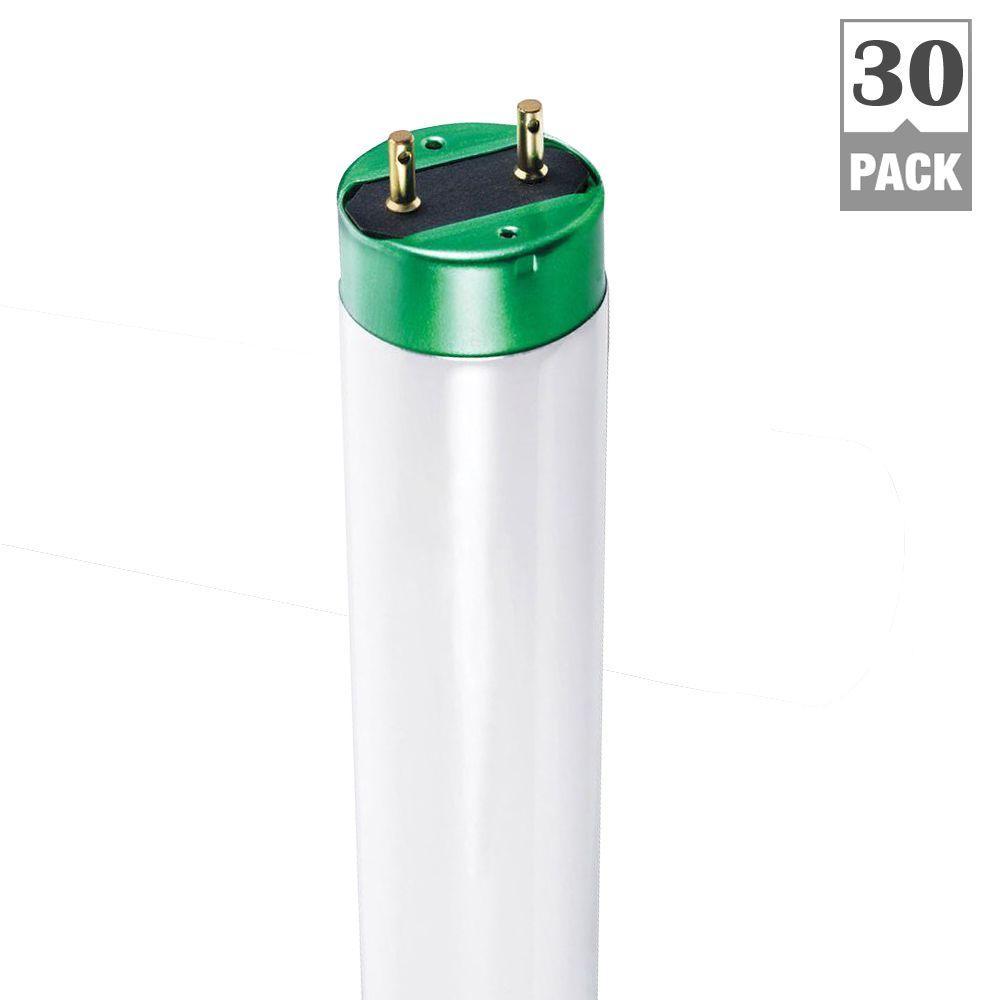 32-Watt 4 ft. Cool White Linear T8 Fluorescent Light Bulb (30-Pack)