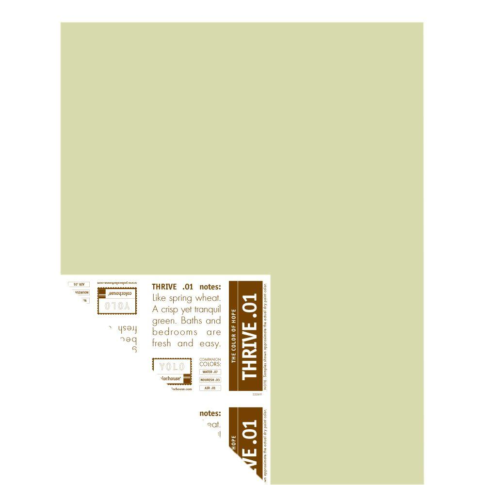 YOLO Colorhouse 12 in. x 16 in. Thrive .01 Pre-Painted Big Chip Sample