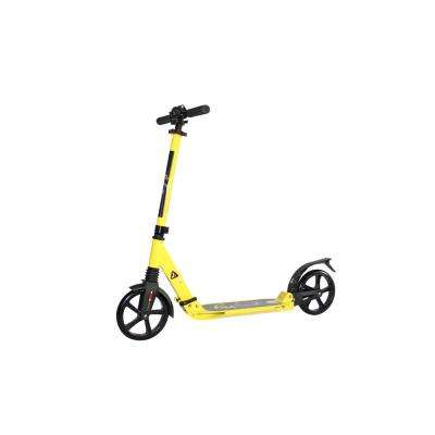 Bee Free XLT Foldable Kick Scooter with Adjustable Handle Bars for Teens/Adults, 12 plus Years Old