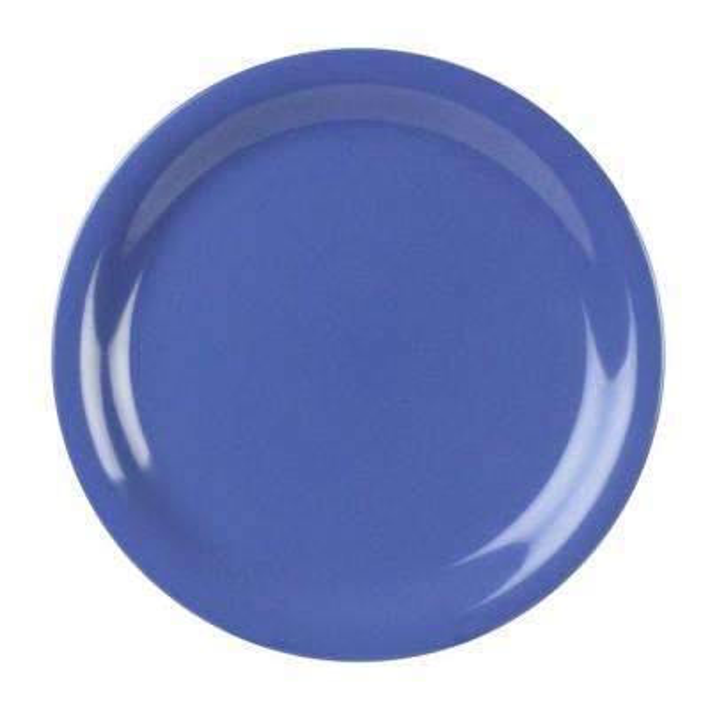 Coleur 10-1/2 in. Narrow Rim Plate in Purple (12-Piece)