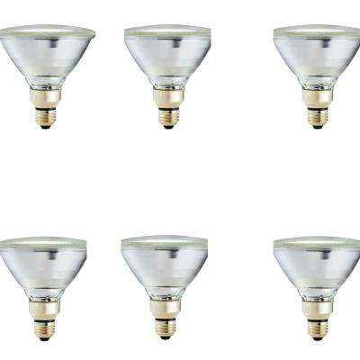 90-Watt Equivalent PAR38 Halogen Indoor/Outdoor Dimmable Flood Light Bulb (6-Pack)