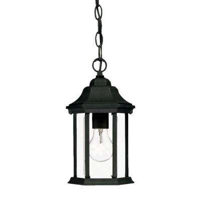 Madison Collection 1-Light Matte Black Outdoor Hanging Lantern