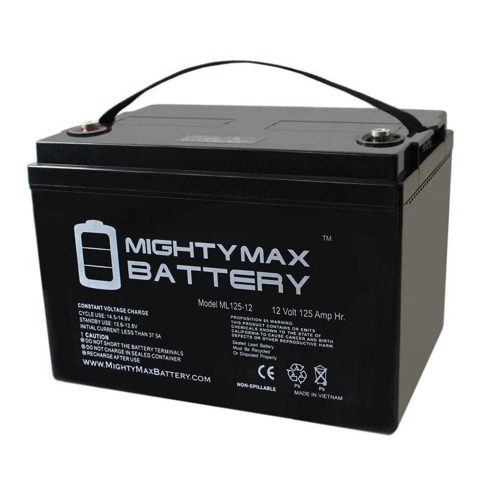 12-Volt 125 Ah Rechargeable Sealed Lead Acid (SLA) Battery