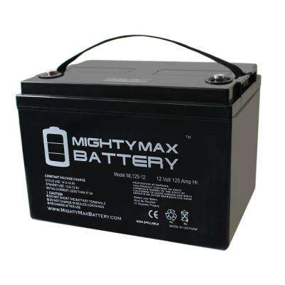 12-Volt 125 Ah Rechargeable Sealed Lead Acid (SLA) Battery