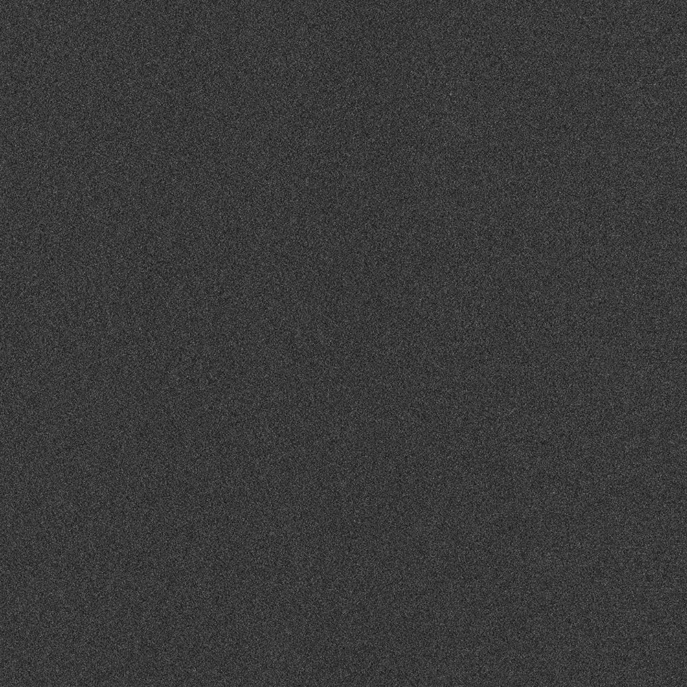 Arcadian - Color Black Ice Texture Indoor/Outdoor 12 ft. Carpet