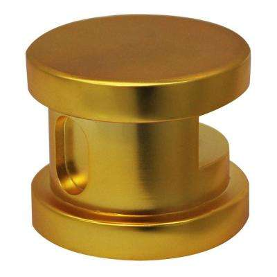2 in. Steam Head with Aromatherapy Reservoir in Polished Brass