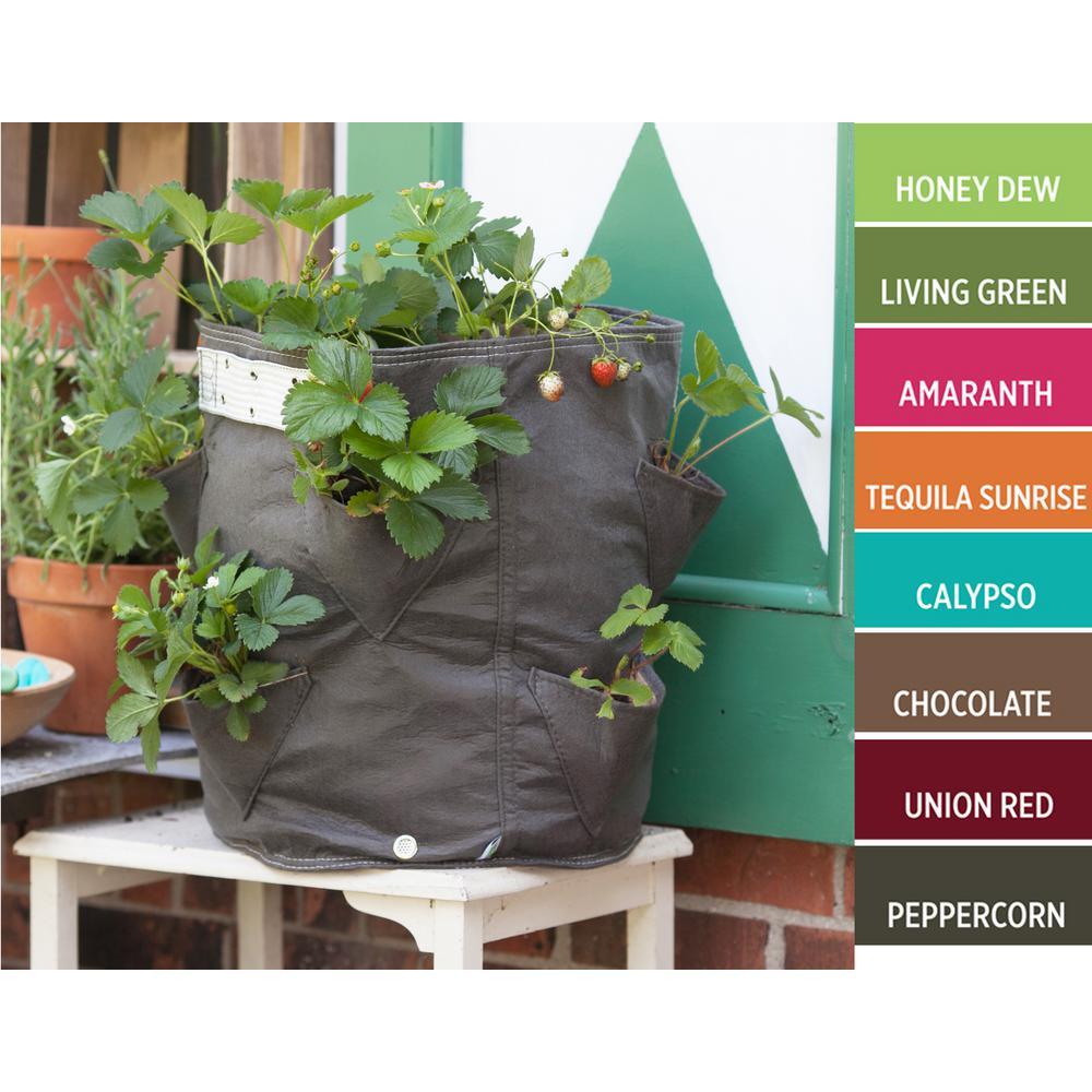 Bloem Bloembagz Strawberry Planter Grow Bag 9 Gallon Chocolate