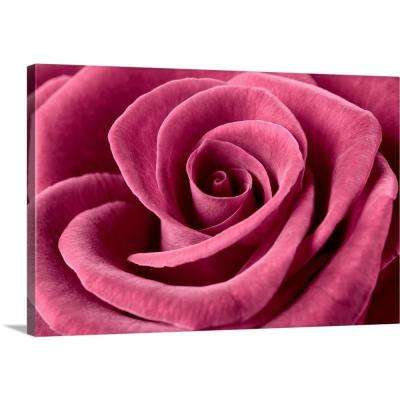 """Rose"" by Cora Niele Canvas Wall Art"
