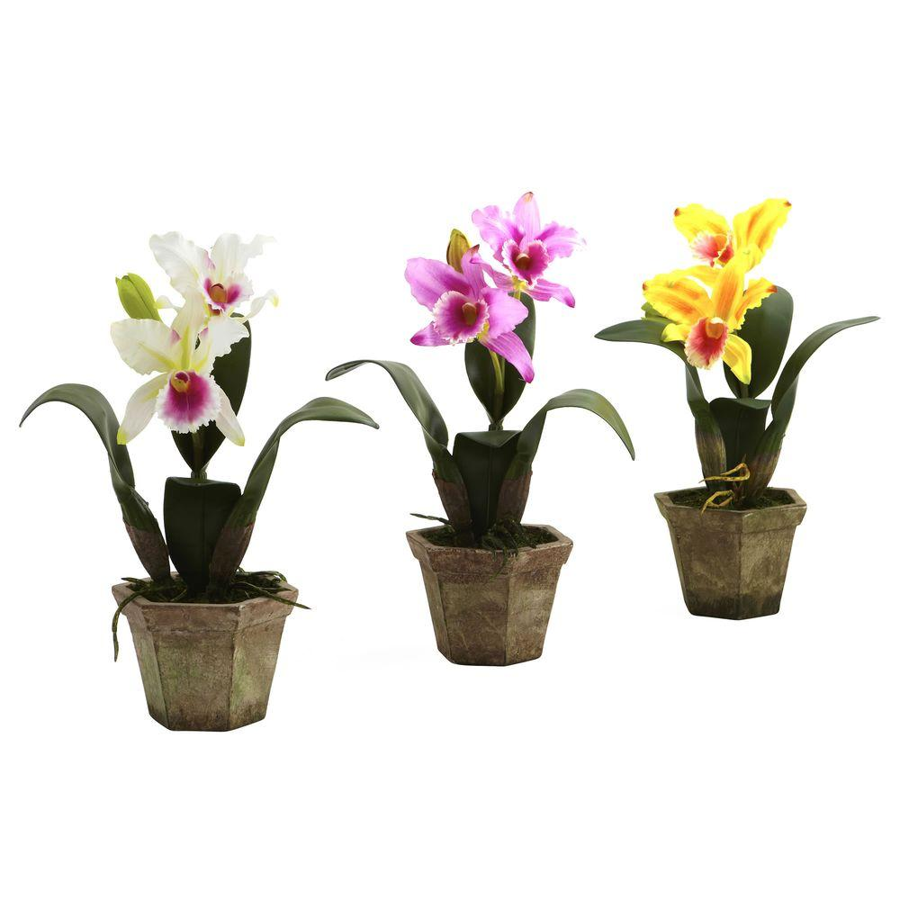 Nearly Natural Cattelya Orchid with Vase (Set of 3)