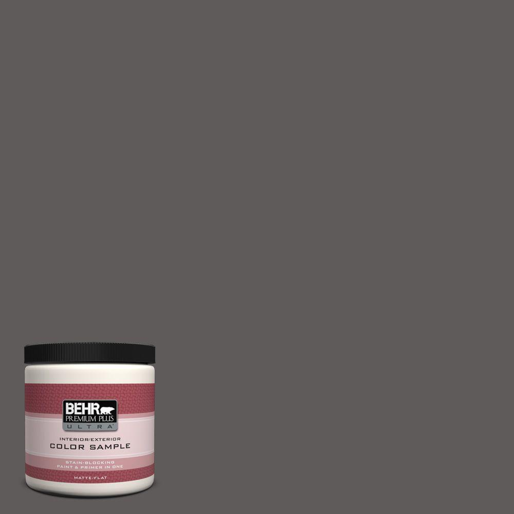 8 oz. #PPU18-19 Intellectual Flat Interior/Exterior Paint and Primer in One