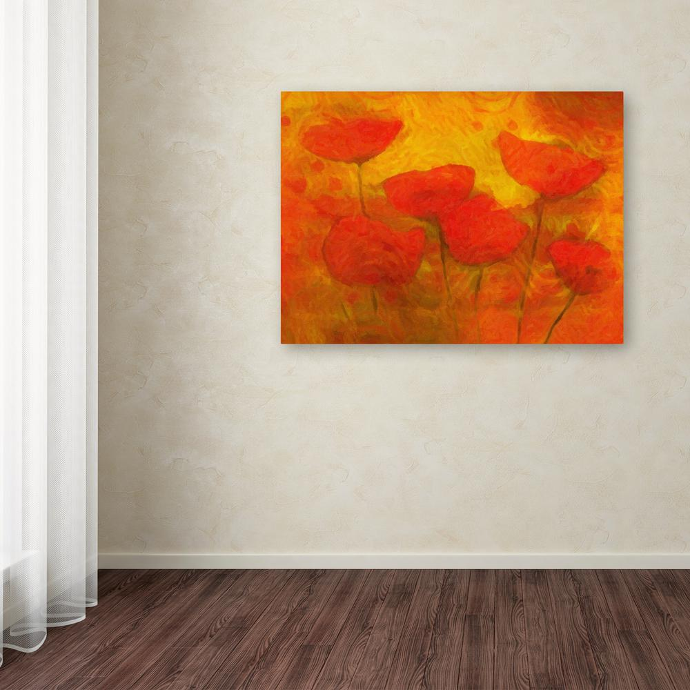 "35 in. x 47 in. ""Poppies"" by Adam Kadmos Printed Canvas"