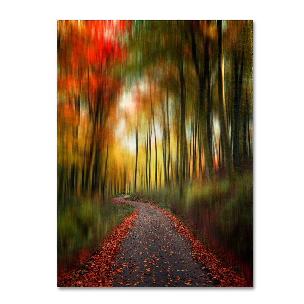 22 in. x 32 in. The Lost Path Canvas Art