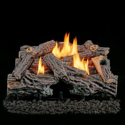 24 in. Vent-Free Dual Fuel Gas Log Set in Traditional Oak with Manual Control