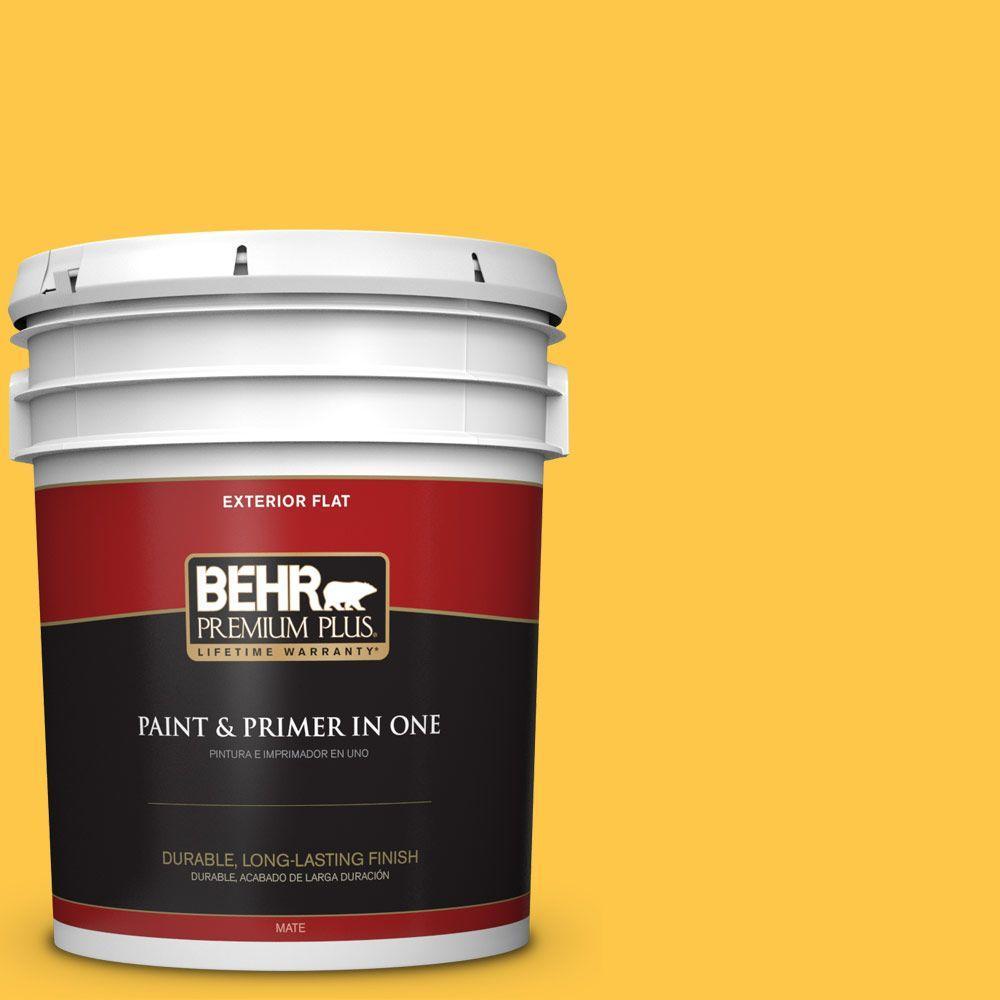 BEHR Premium Plus 5-gal. #350B-7 Chickadee Flat Exterior Paint