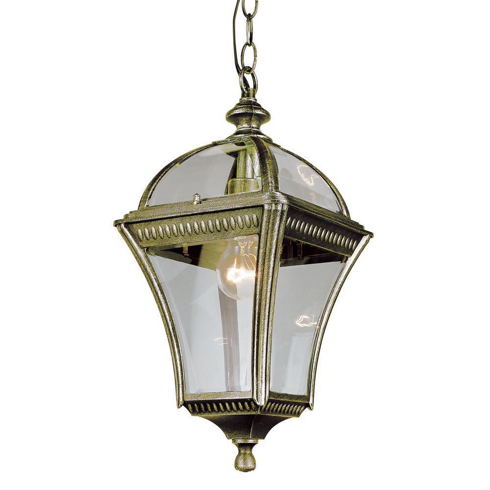 Washington Black Gold 1-Light Outdoor Hanging Lantern