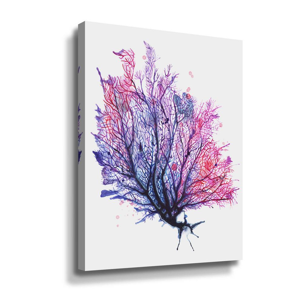 'Sea Fan - purple' by  Sam nagel Canvas Wall Art