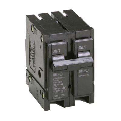 60 Amp 2 in. Double-Pole Type BR Replacement Circuit Breaker