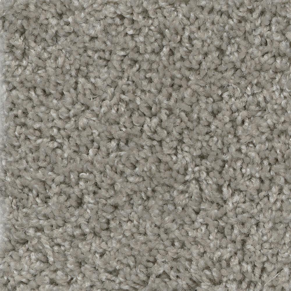 TrafficMaster Wonder - Color Marvel Texture 12 ft. Carpet