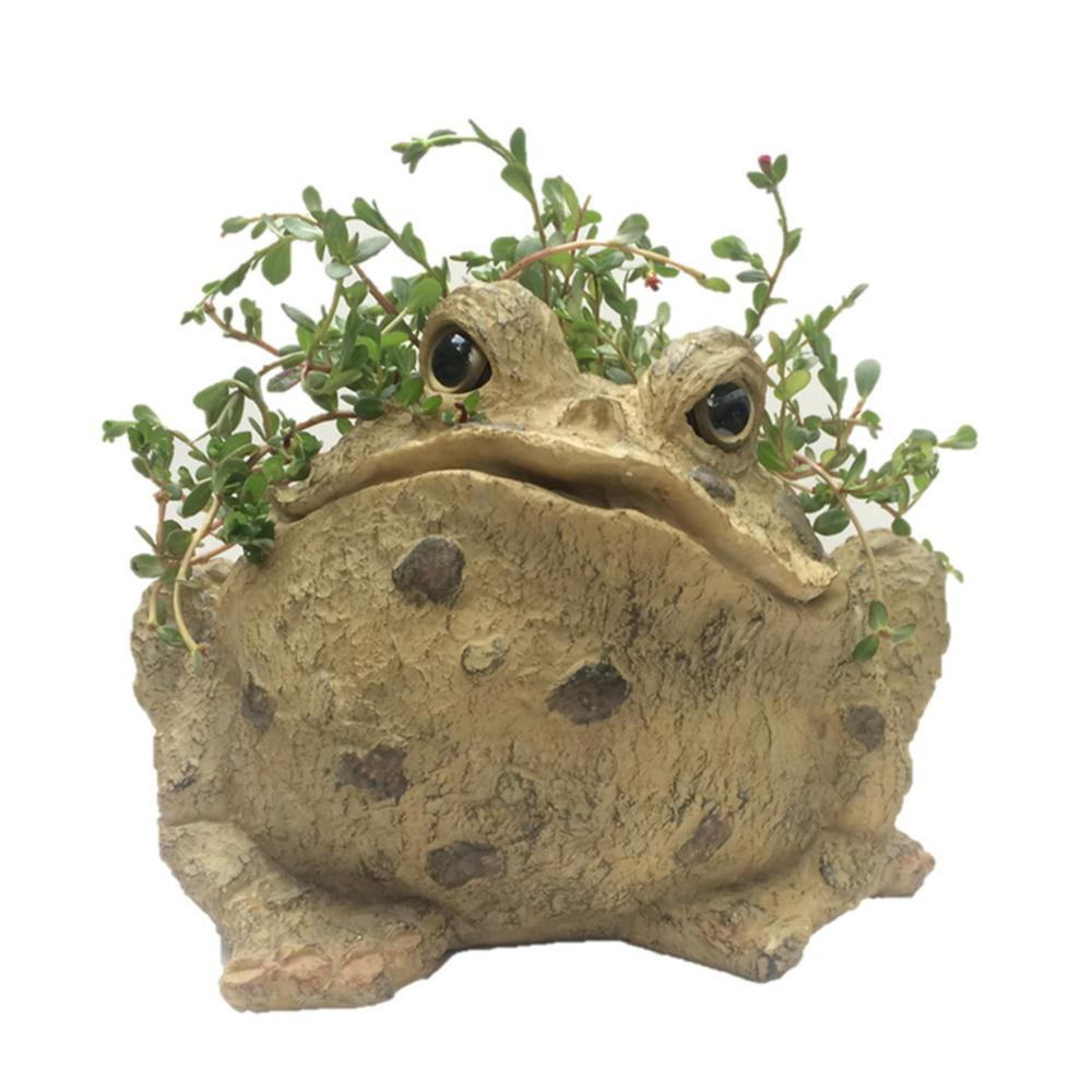 Toad Planter Garden Frog Statue Holds