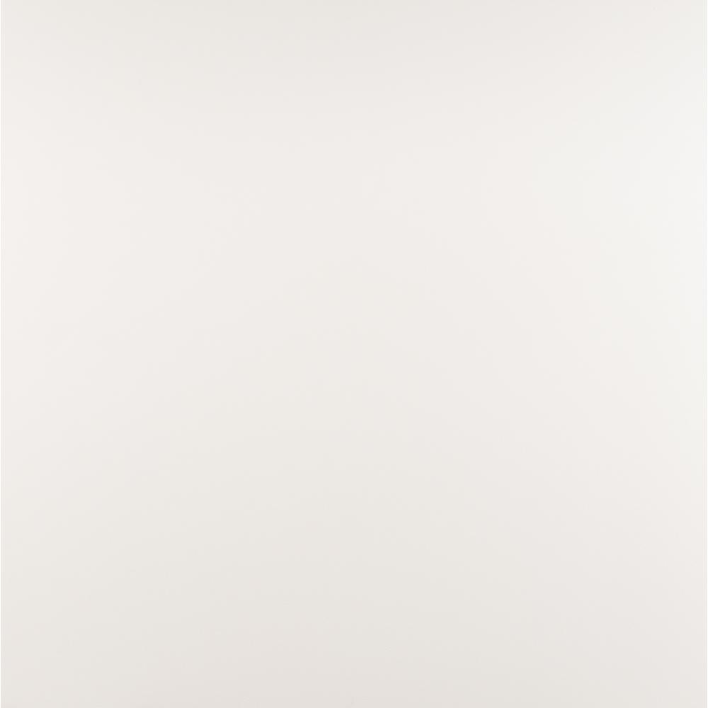 White 24 in. x 24 in. Glazed Porcelain Floor and Wall