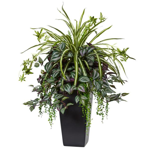 Nearly Natural Indoor Wandering Jew and Spider Plant in Black ... on spider plant care tips, spider plant light, spider eating food, tall spider plant, spider plant on a stick, spider infestation in home, spider plants outside, spider plant poisonous, spider plant varieties, spider plant roots, houseplants plant, rare spider plant, spider grass plant, spider plant care indoor, snake plant, spider plant toxic to dogs, spider flowering plant, spider plant in the wild, aloe vera plant,