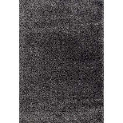 2 X 3 And Smaller Area Rugs The Home Depot