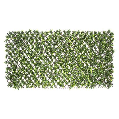 Expandable Willow Trellis with Gardenia Leaf