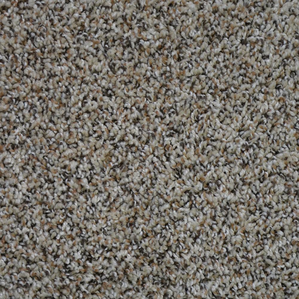 Home Depot Carpeting Dry Carpet